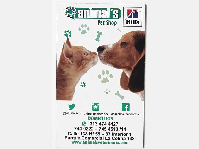 animals_pet